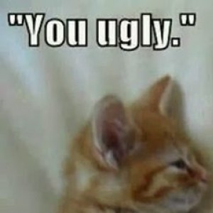 """""""You Ugly"""" """"We're Twins"""""""