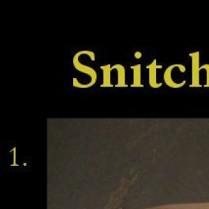 Snitch Tutorial