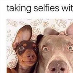 Taking Selfies With Your Bestie Like...