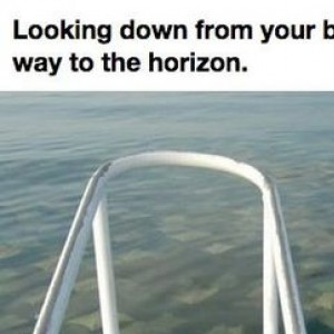 This Will Give You The Creeps And Make You Never Want To Swim Again