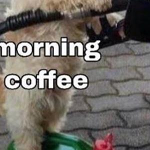 When The Morning Coffee Kicks In