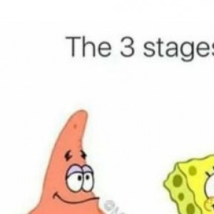 which stage are you in?
