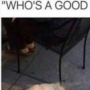 Who's A Good B-